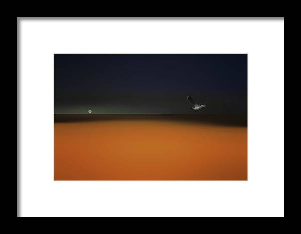 Seascape Framed Print featuring the photograph Summer And The Sea by Tom York Images