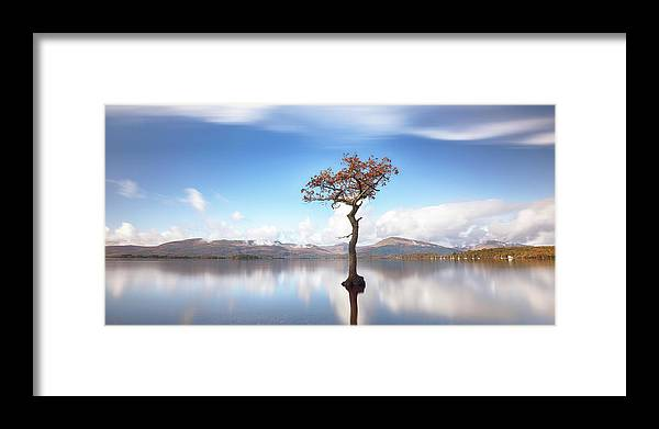 Lone Tree Framed Print featuring the photograph Sunny Afternoon On Loch Lomond by Grant Glendinning