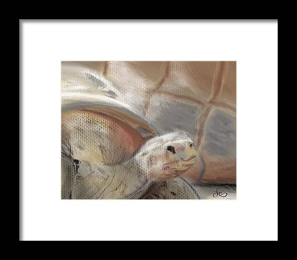 Tortoise Framed Print featuring the digital art Sweet Tortoise by Fe Jones