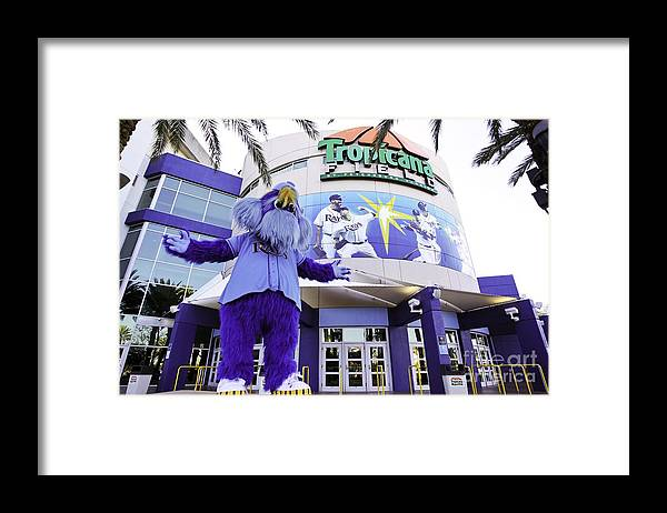 American League Baseball Framed Print featuring the photograph Tampa Bay Rays Mascot by Mlb Photos
