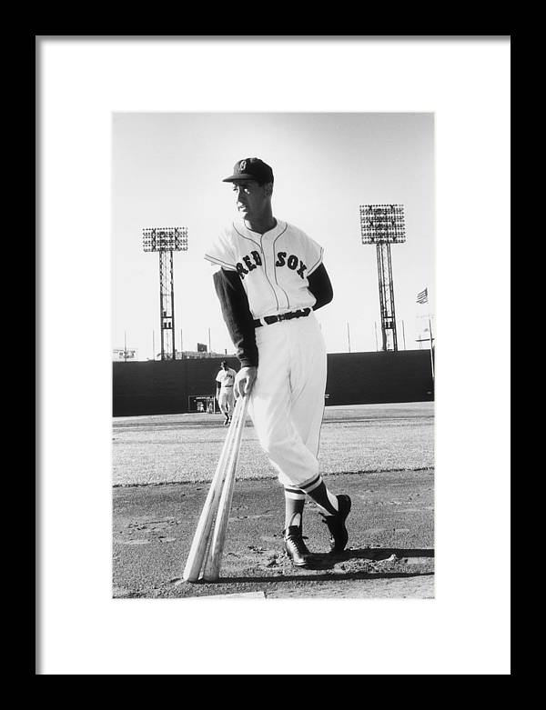 People Framed Print featuring the photograph Ted Williams by Slim Aarons
