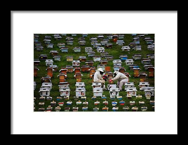 Beekeeper Framed Print featuring the photograph The Beekeepers by Niyazi Gürgen