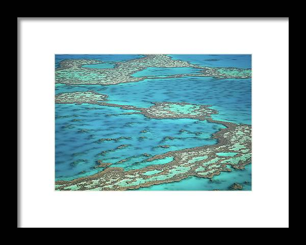 Scenics Framed Print featuring the photograph The Big Reef, Whitsunday Islands by Chantal Ferraro