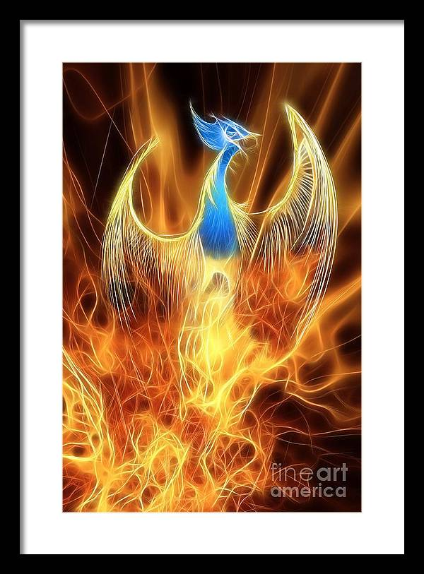 The Phoenix rises from the ashes by John Edwards