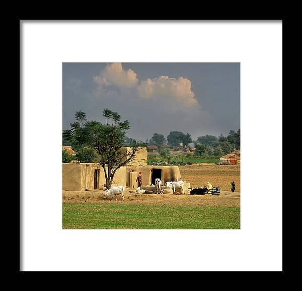 Grass Framed Print featuring the photograph The Village Of Punjab by Nadeem Khawar