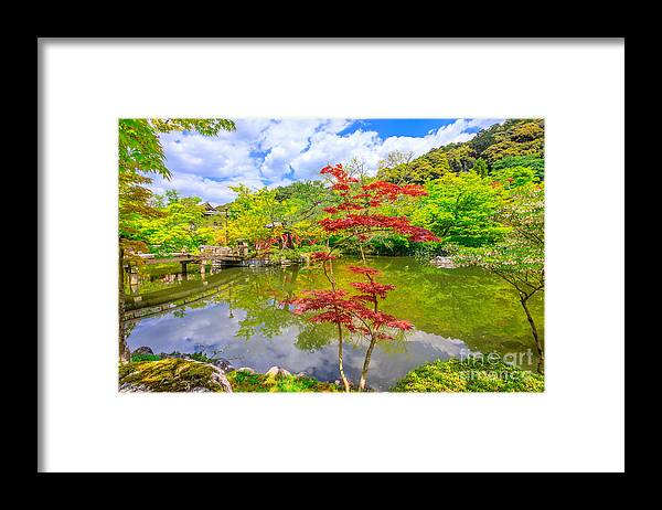 Kyoto Framed Print featuring the photograph Torii Gate In Eikando by Benny Marty