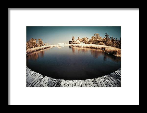 Tranquility Framed Print featuring the photograph Trees And Plants In A Pond by D3sign
