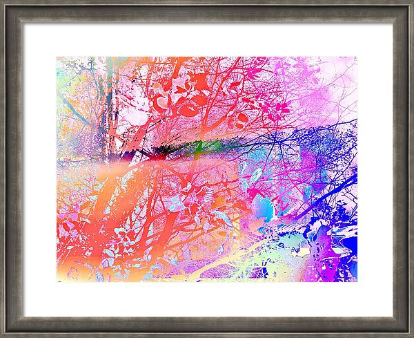 Under the Trees Colorful Framed Print by Onlythemoon