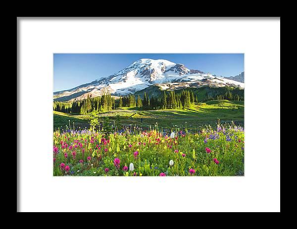 Scenics Framed Print featuring the photograph Usa, Washington, Mt. Rainier National by Rene Frederick