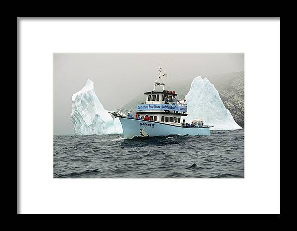 Whale Watching Boat And Iceberg Off Framed Print