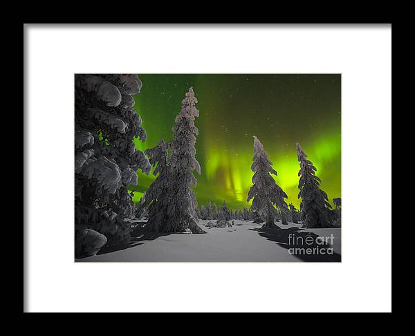 Country Framed Print featuring the photograph Winter Night Landscape With Forest And by Oxana Gracheva