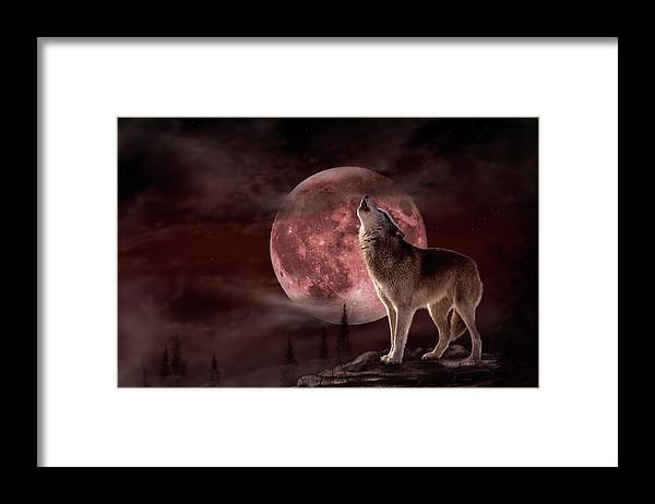 Wolf Moon Framed Print featuring the photograph Wolf Moon by Gordon Semmens
