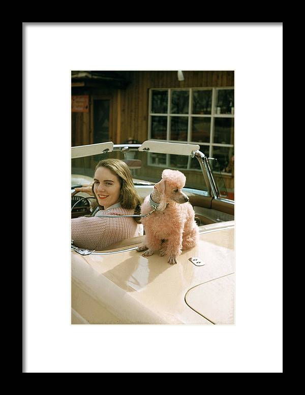 Pets Framed Print featuring the photograph Woman & Her Poodle by Nina Leen