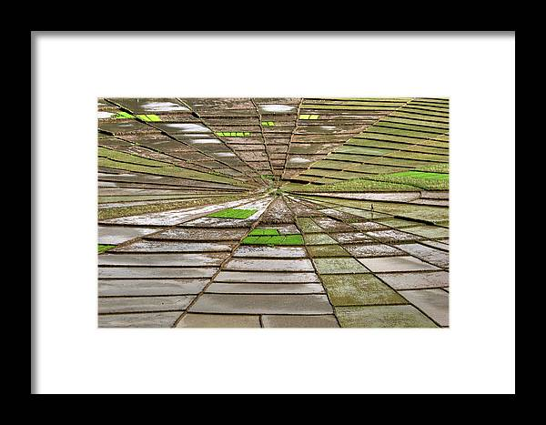 Working Framed Print featuring the photograph Working The Spiderwebs by Photo ©tan Yilmaz