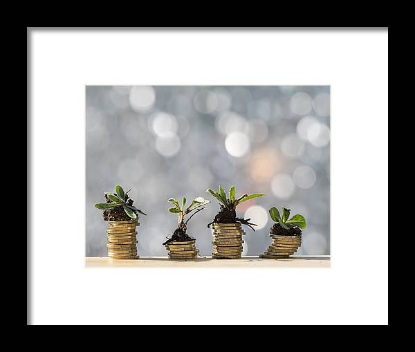New Business Framed Print featuring the photograph Heaps of coins of Euro with green natural plants it they are born, illuminated by the light of the sun by Jose A. Bernat Bacete