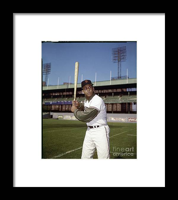 Sports Bat Framed Print featuring the photograph Orlando Cepeda by Louis Requena
