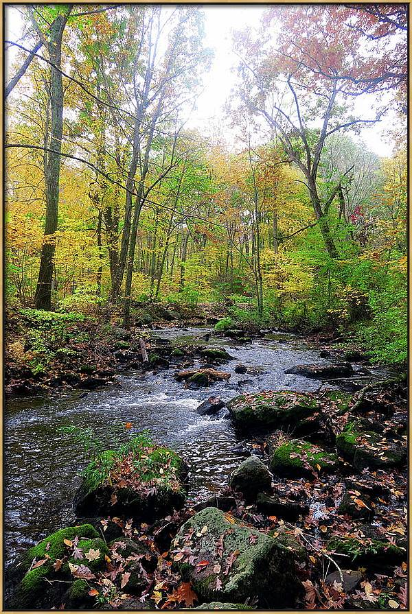 Pequonnock River, Old Mine Park, Trumbull CT by Thomas Henthorn
