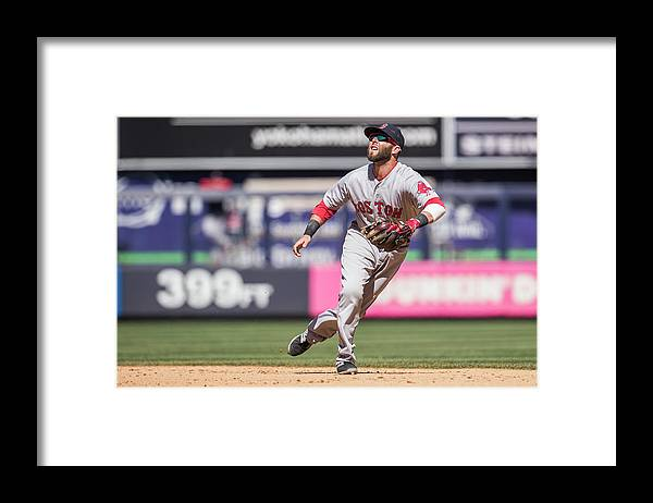 People Framed Print featuring the photograph Dustin Pedroia by Rob Tringali