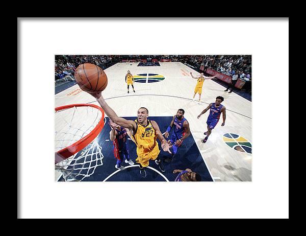Nba Pro Basketball Framed Print featuring the photograph Rudy Gobert by Melissa Majchrzak