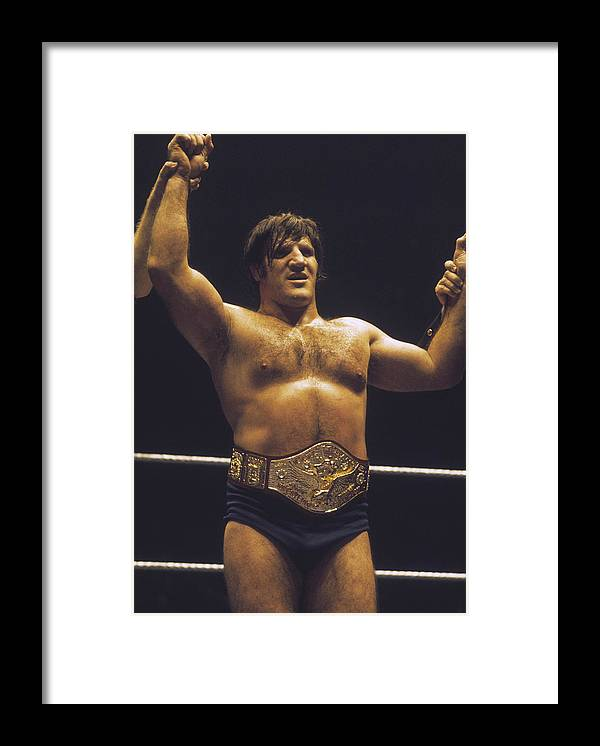 People Framed Print featuring the photograph Bruno Sammartino... by Focus On Sport