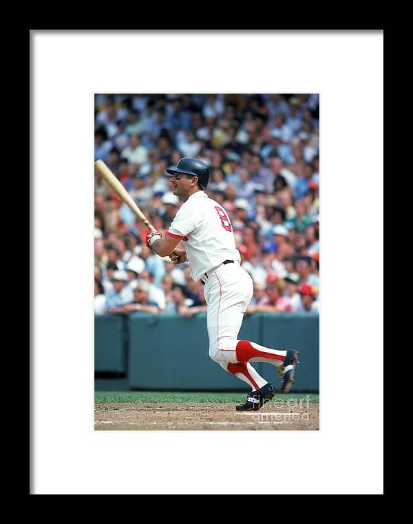 American League Baseball Framed Print featuring the photograph Carl Yastrzemski by Rich Pilling