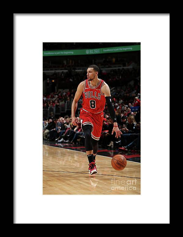 Nba Pro Basketball Framed Print featuring the photograph Zach Lavine by Gary Dineen