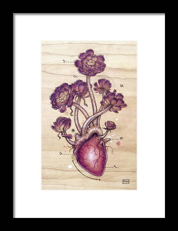Pyrography Framed Print featuring the pyrography Aeonium Heart by Fay Helfer