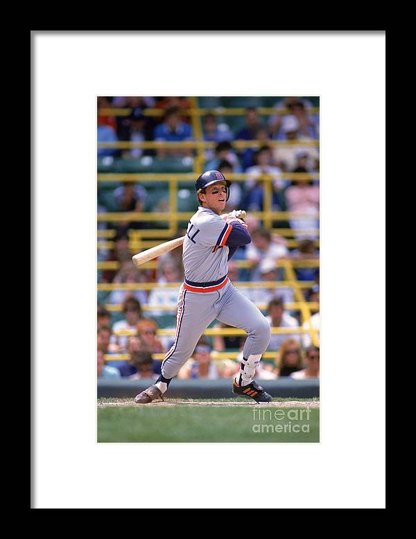 American League Baseball Framed Print featuring the photograph Alan Trammell by Ron Vesely