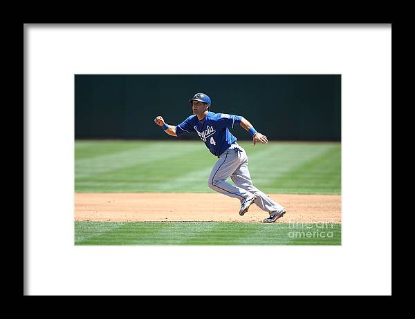American League Baseball Framed Print featuring the photograph Alex Gordon by Brad Mangin