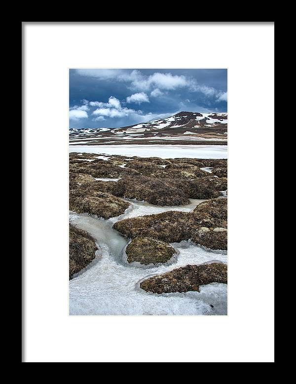 Scenics Framed Print featuring the photograph Artic Vegetation And Snow Pattern In The Foreground And Snowy Mountains In The Background by Fibru Photography