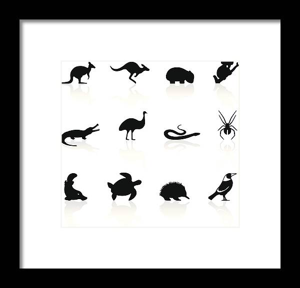 Magpie Framed Print featuring the drawing Australian animal icons by Logorilla