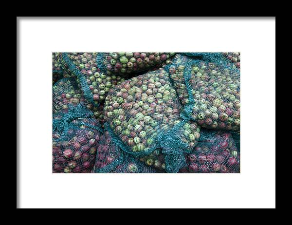 Outdoors Framed Print featuring the photograph Bags of organic apples by Joseph Clark