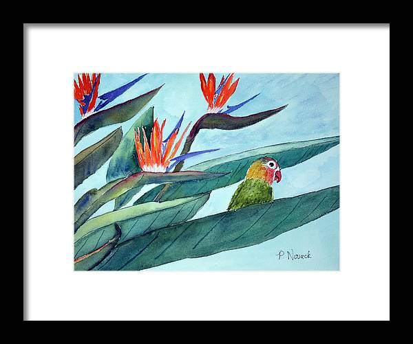 Bird Framed Print featuring the painting Bird In Paradise by Patricia Novack