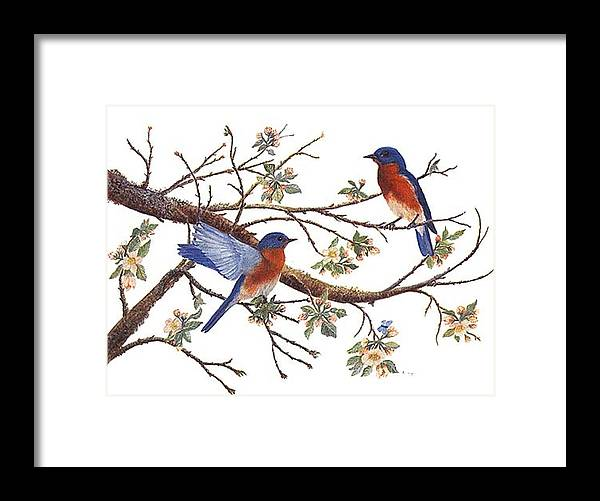 Bluebirds Framed Print featuring the painting Bluebirds And Apple Blossoms by Ben Kiger