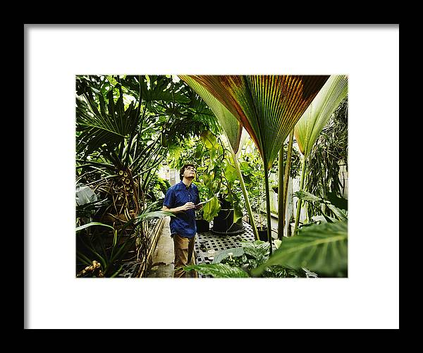 Expertise Framed Print featuring the photograph Botanist in greenhouse with digital tablet by Thomas Barwick
