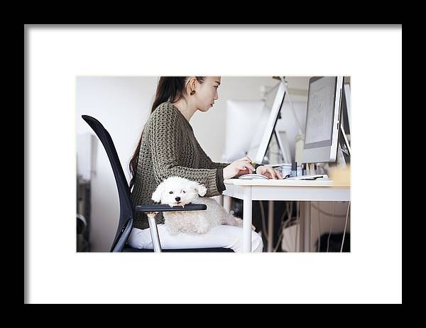 Pets Framed Print featuring the photograph Business Woman Working At Office With Dog by Kohei Hara