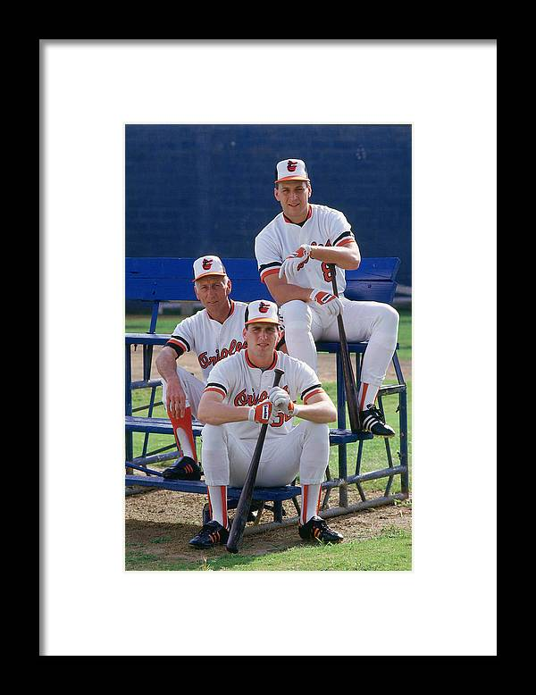 1980-1989 Framed Print featuring the photograph Cal Ripken by Ronald C. Modra/sports Imagery