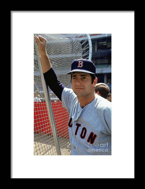 American League Baseball Framed Print featuring the photograph Carl Yastrzemski by Mlb Photos