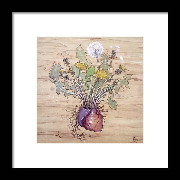 Dandelion Framed Print featuring the pyrography Dandelion Heart by Fay Helfer