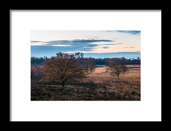 Scenics Framed Print featuring the photograph De Hamert by William Mevissen