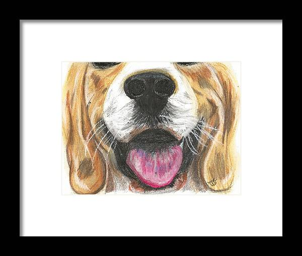 Dog Face Framed Print featuring the painting Dog Face by Monica Resinger