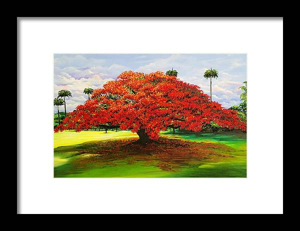 Flamboyant Tree Framed Print featuring the painting Flamboyant Ablaze by Karin Dawn Kelshall- Best