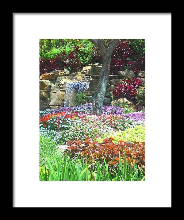 Garden Framed Print featuring the photograph Floral Garden by Pharris Art