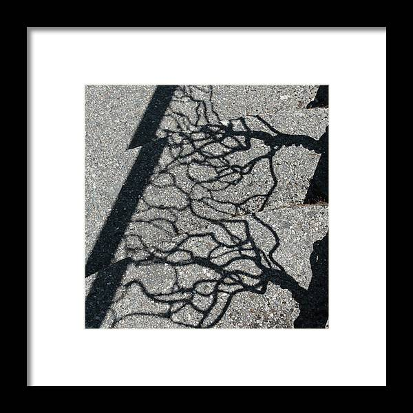 Photograph Framed Print featuring the photograph Fractured by Richard Wetterauer
