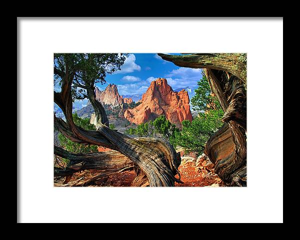 Garden Of The Gods Framed Print featuring the photograph Garden framed by twisted Juniper Trees by John Hoffman