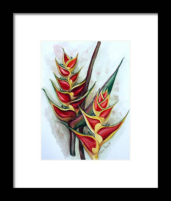 Caribbean Painting Flower Painting Floral Painting Heliconia Painting Original Watercolor Painting Of Heliconia Bloom  Trinidad And Tobago Painting Botanical Painting Framed Print featuring the painting Heliconia Tropicana Trinidad by Karin Dawn Kelshall- Best