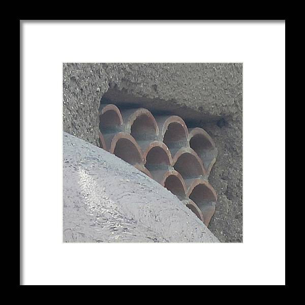 Photograph Framed Print featuring the photograph Hornets Nest by Richard Wetterauer