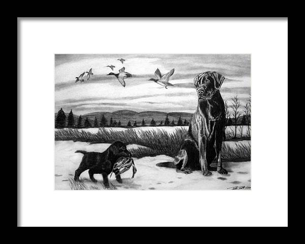 In Training Framed Print featuring the drawing In Training by Peter Piatt