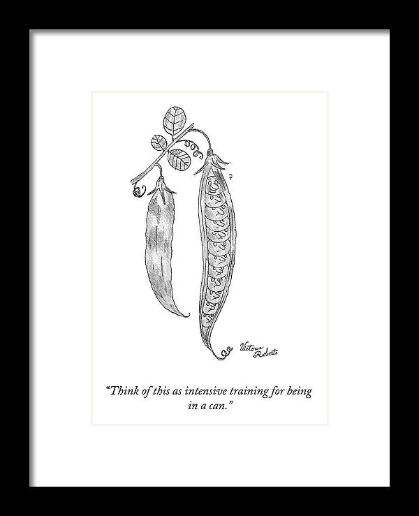 """""""think Of This As Intensive Training For Being In A Can."""" Peas Framed Print featuring the drawing Intensive Training by Victoria Roberts"""