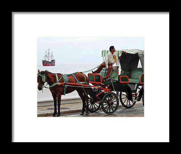Horse Framed Print featuring the photograph Lovely Transportation in Cozumel by Kirsten Giving